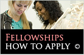 Link to Fellowship application procedure